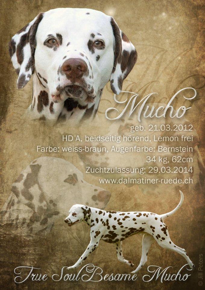 Mucho-ClubMagazin2